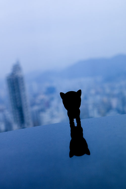7 Eleven, Dog, Hongkong