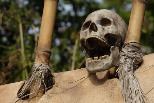 Disneyland Resort HongKong - Skull